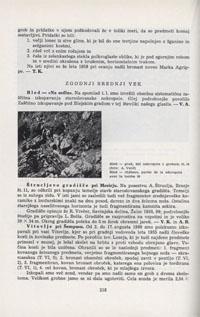 Bled - Na Sedlu